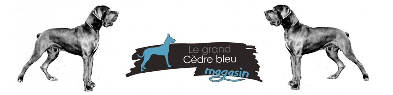 Le Grand Cèdre Bleu Magasin