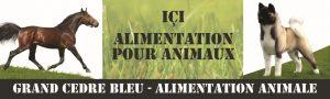 _bache-aliment-bd3